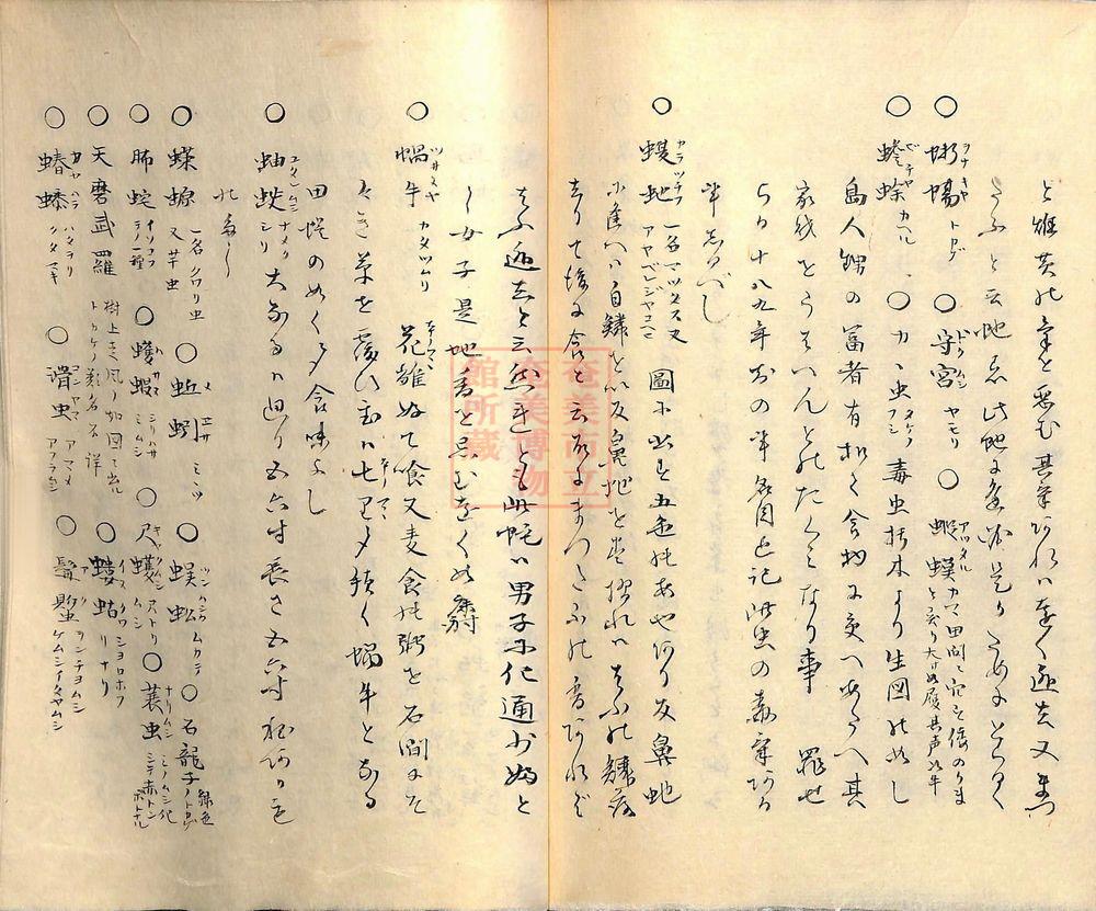 furoku (87)