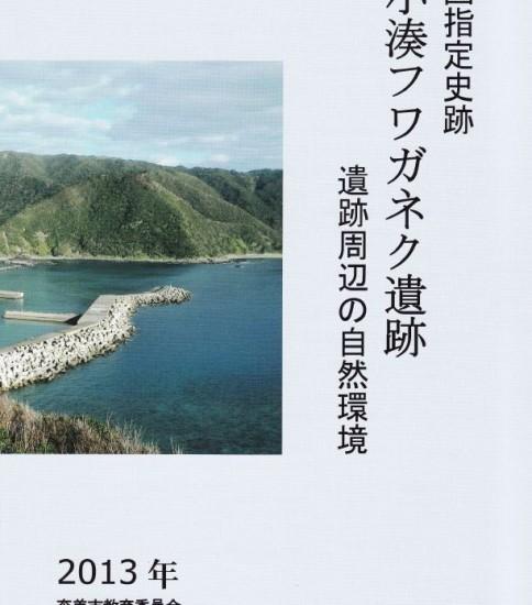 小湊フワガネク遺跡2013