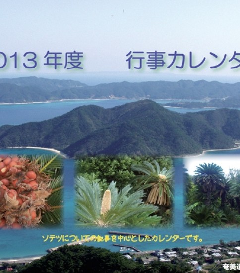 奄美旧暦行事カレンダー2013