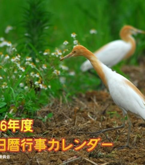 奄美旧暦行事カレンダー2014