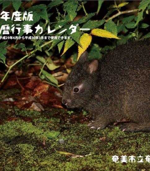 平成29年度版「奄美旧暦行事カレンダー」まもなく発売 !