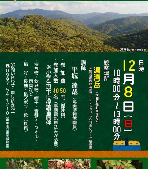 湯湾岳いきもの観察会開催のお知らせ