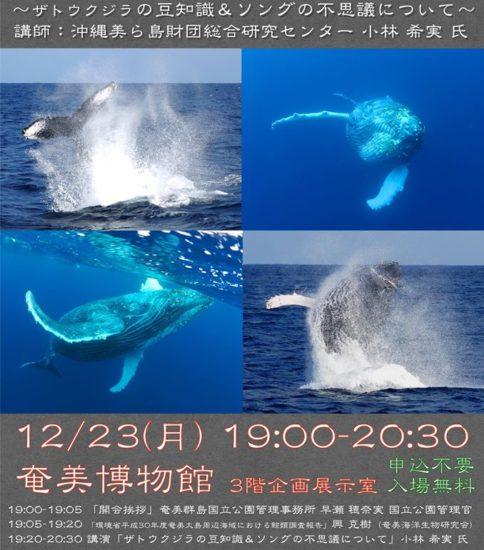 「ザトウクジラ講演会」が開催されます!